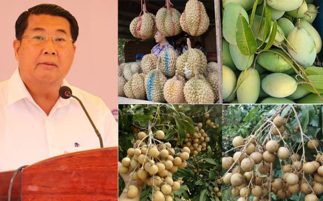 Kampot seeks investment to boost fruit exports