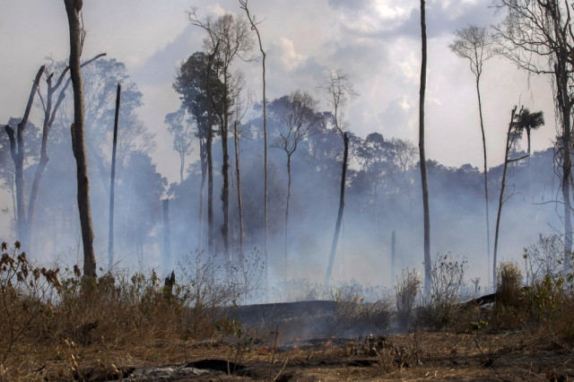 G7 pledges millions to fight Amazon fires
