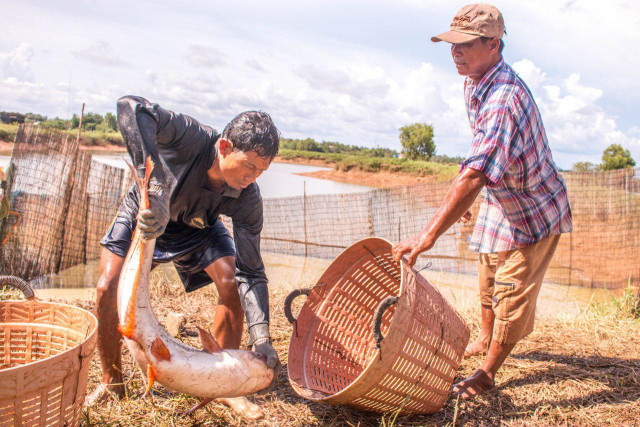 Appetite software could be adapted to Mekong fish farms