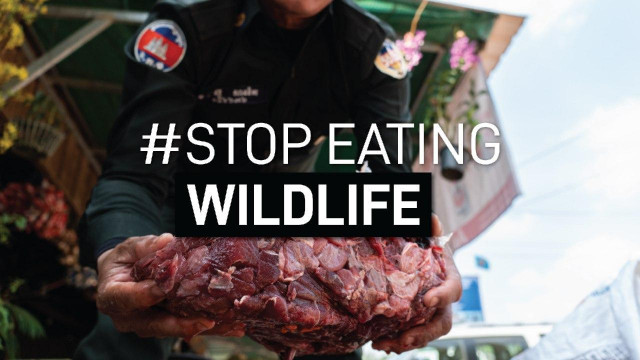 Asian Populations Are Open to Banning Wildlife Food Products in View of COVID-19