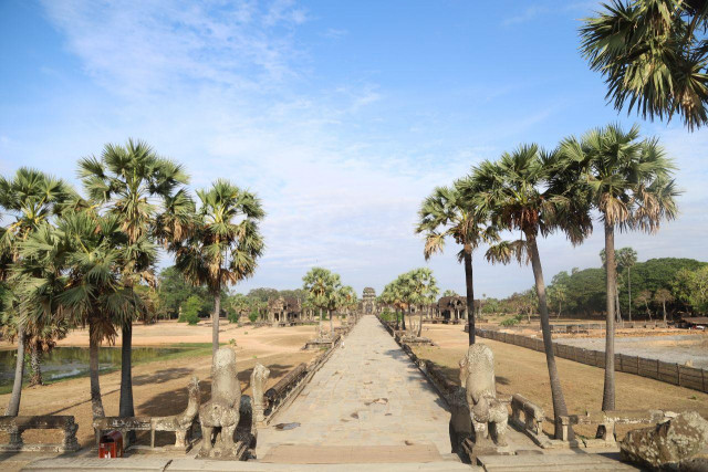 Cambodia's famed Angkor reports 60-pct drop in foreign tourists in first 4 months