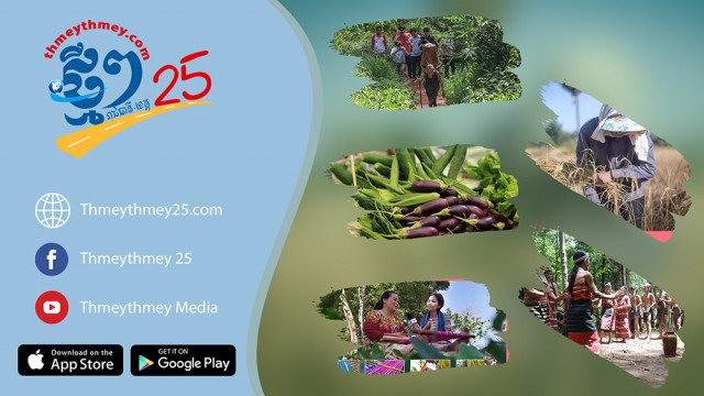 ThmeyThmey25 Receives Funding from UNDP for its Local-Product Promotion Program
