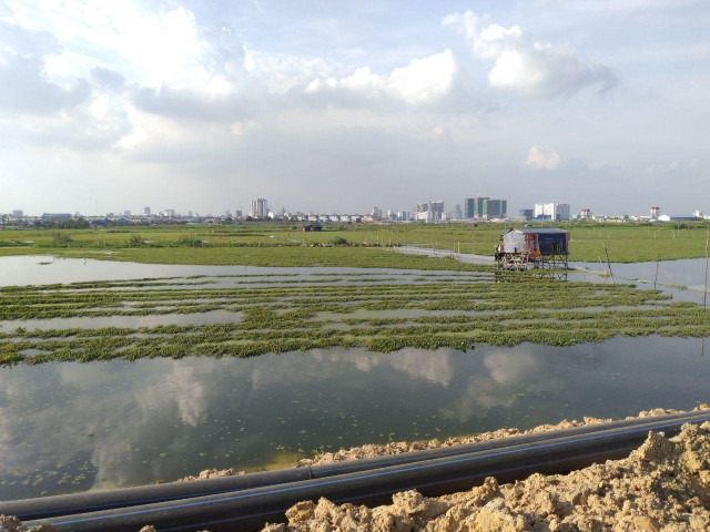 Report: Unsustainable Development of Wetlands Threatens 1M Cambodians