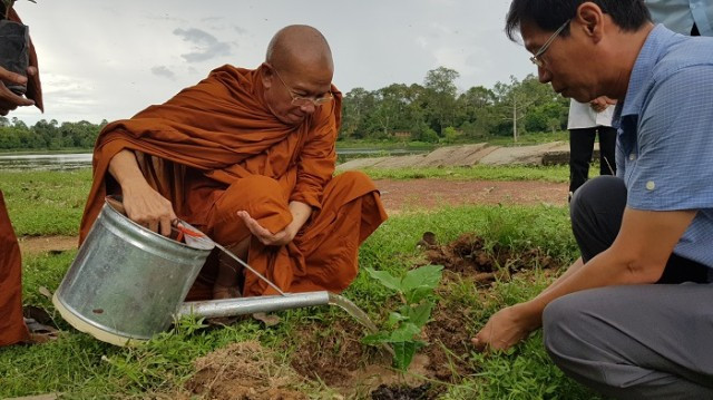 Buddhist Monks Get Involved in Bael Tree Planting in Angkor Park