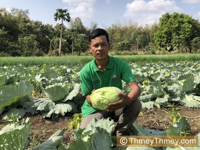 Reformed Illegal Logger Turns to Organic Farming in Mondulkiri