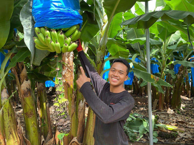 A Cambodian Student Returns Inspired from an Agriculture Internship in Israel