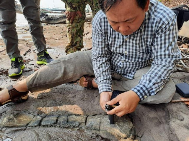 Fossil Bone Points to Link with Dinosaurs