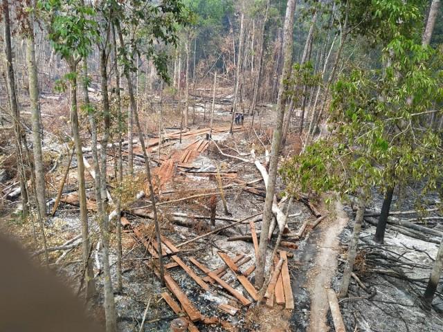 Inspection Shows Wildlife Sanctuary Deforestation