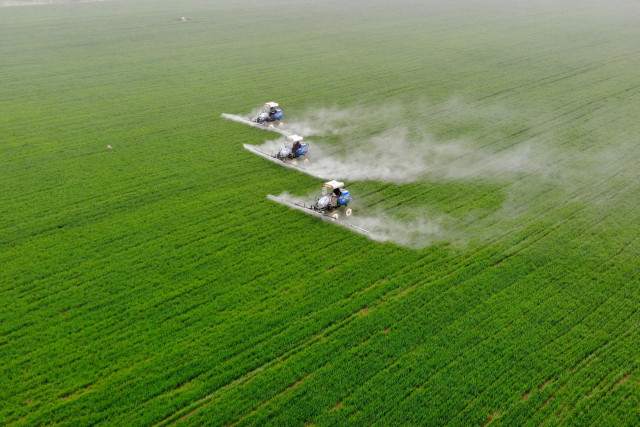 Food security underscored in China's new draft law