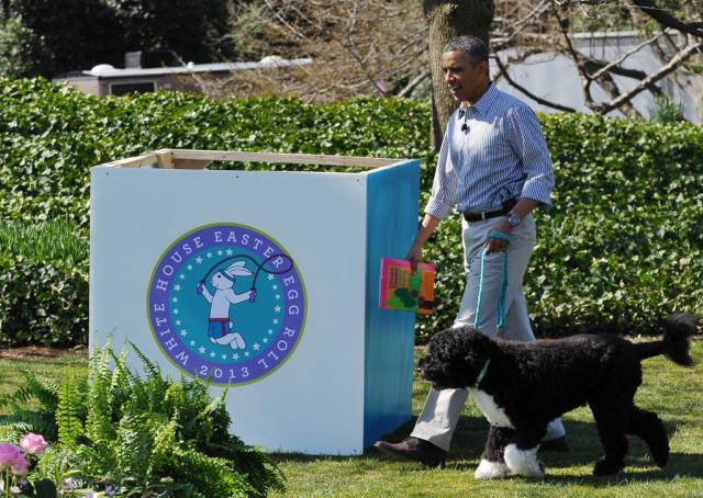 Obamas' dog Bo, a star of the White House, dies