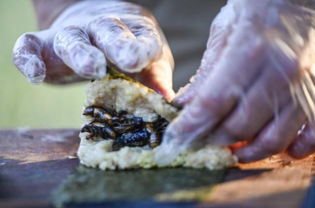 Cicada sushi, anyone? US chef serves up sustainable 'Brood X' delicacy