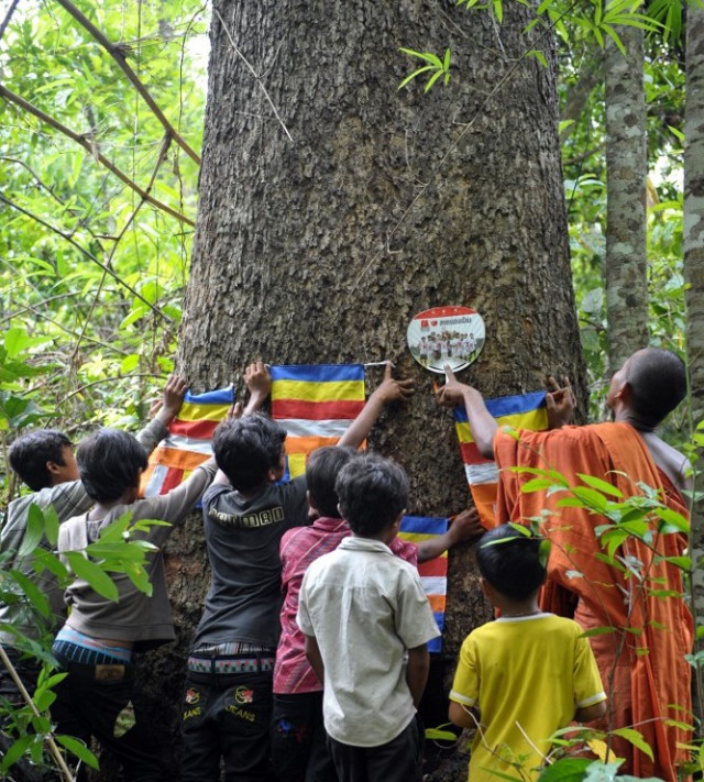 Opinion: Cambodia Needs More Active Environmental Youth Engagement