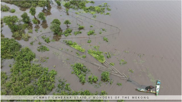 Loss of Flooded Forests Surrounding the Tonle Sap Lake Results in Fish Decline