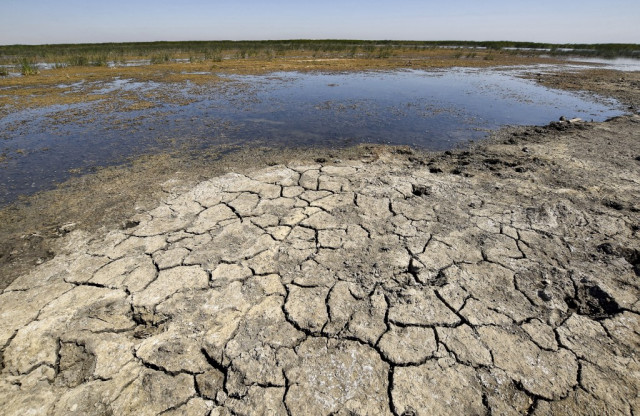 For war-scarred Iraq, climate crisis the next great threat