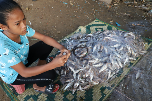 Fish: New Expensive Protein in Cambodia