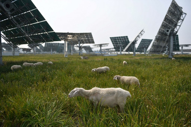 China signals steady course after UN climate warning