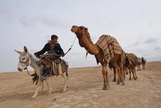 Afghanistan's ethnic mosaic