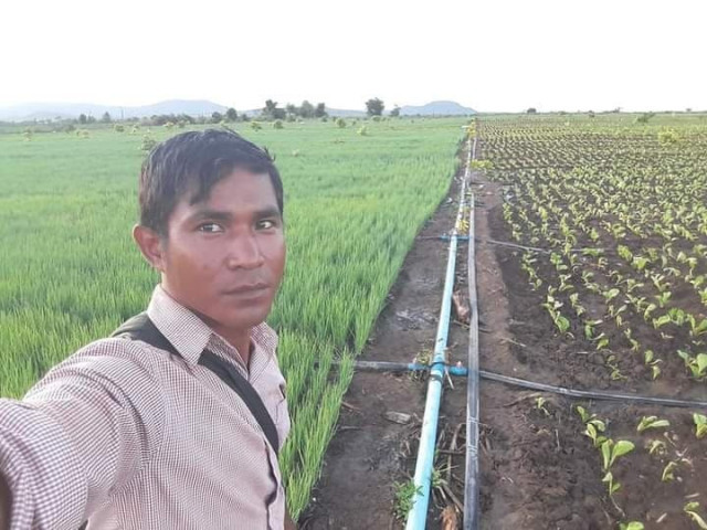 Farmer Suffers as Bunching Onion Prices Plunge