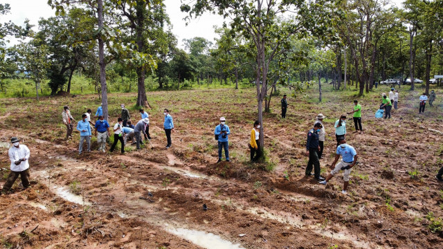 More than 1,000 Rosewood Trees Planted to Mark Ozone Day