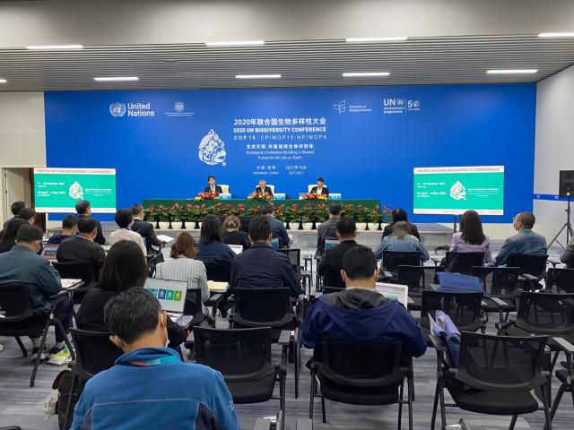 Key UN biodiversity summit to open in China