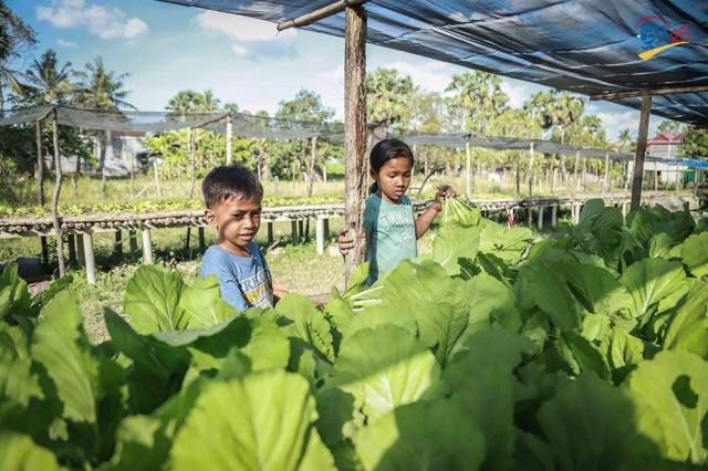 Rural Development Bank pledges a US$2 million loan scheme to support safe vegetable producers