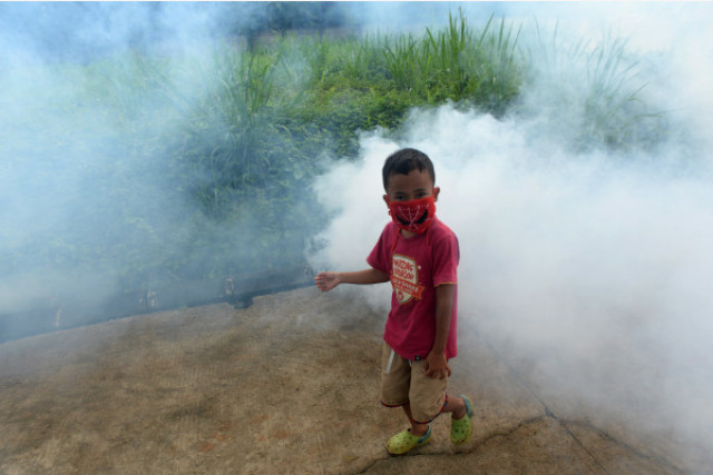 WHO urges more vigilance against dengue amid rainy season
