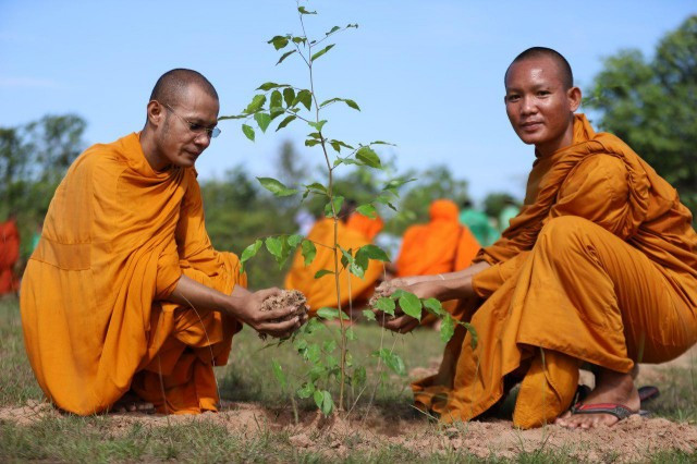 Tree-Planting Initiatives in Angkor Park Gain a Growing Number of Supporters