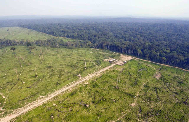 Brazilian Amazon deforestation surges, embattled institute says