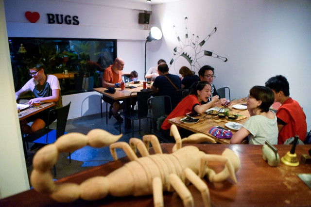 This story has legs: Cambodia 'bug cafe' serves up insect tapas