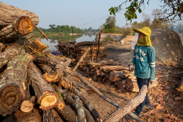 Fuelwood Demand Goes Up as Cambodia Looks for Sustainable Uses