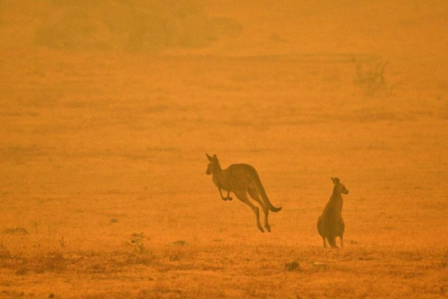 Australia says regional parliamentary meeting going ahead