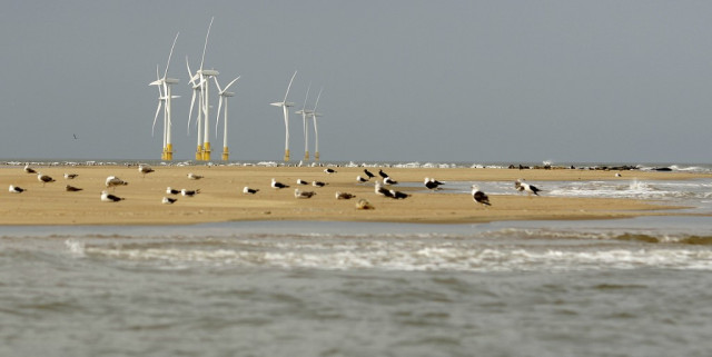 UK looks to offshore wind for green energy transition