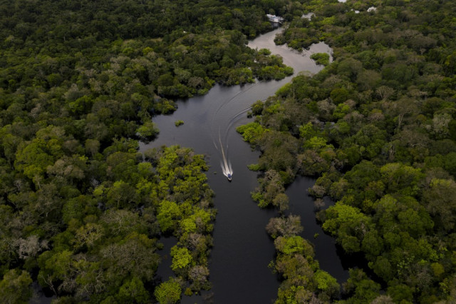 With attention on virus, Amazon deforestation surges