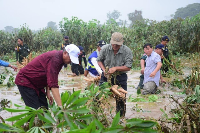 Heavy Rains Damage Thousands of Hectares of Crop Land in Cambodia