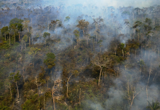 US firms fund deforestation, abuses in Amazon: report