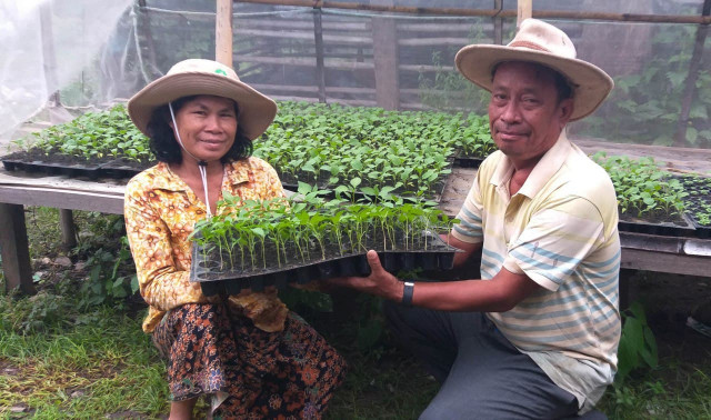 Successful Farmer in Stung Treng: Using Grafting and Irrigation Technologies to Enhance Family Income