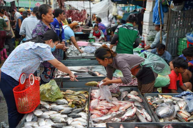 Illegally Imported Fish Devastating the Livelihoods of Cambodian Communities